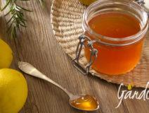 gelatina-di-miele-alle-mele-e-rosmarino