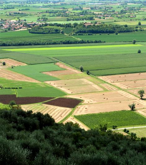 Apicoltura Gardin territorio1