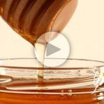 Miele di tiglio biologico Apicoltura Gardin