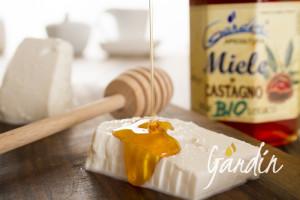 Abbinamento ricotta e miele biologico di castagno