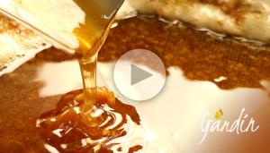 La smielatura del miele di millefiori - Apicoltura Gardin