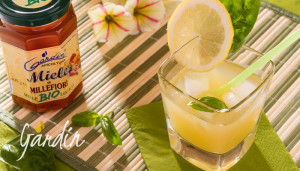 Cocktail pompelmo basilico e miele di millefiori
