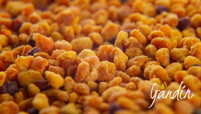 il pane delle api Apicoltura Gardin